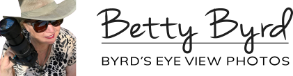 Betty Byrd Byrd's Eye View Photos logo